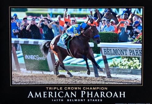 American Pharoah 140th Preakness Stakes Triple Crown Winner