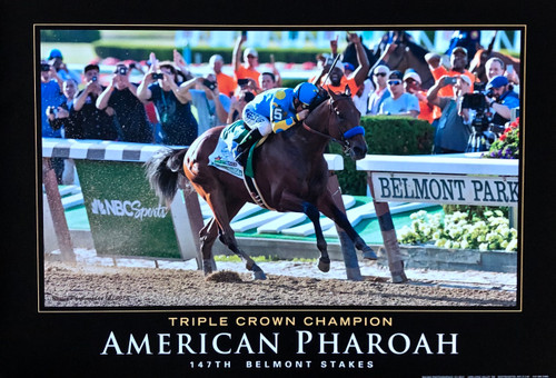 American Pharoah 140th Preakness Stakes Triple Crown Winner