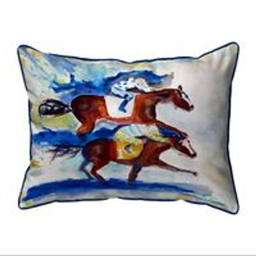 Photo Finish indoor/outdoor pillow large 20 x 16