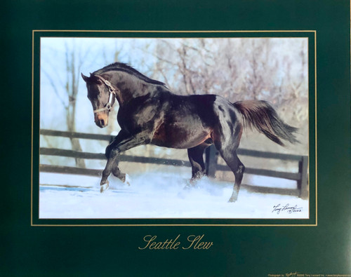 Seattle Slew In The Snow 16x20
