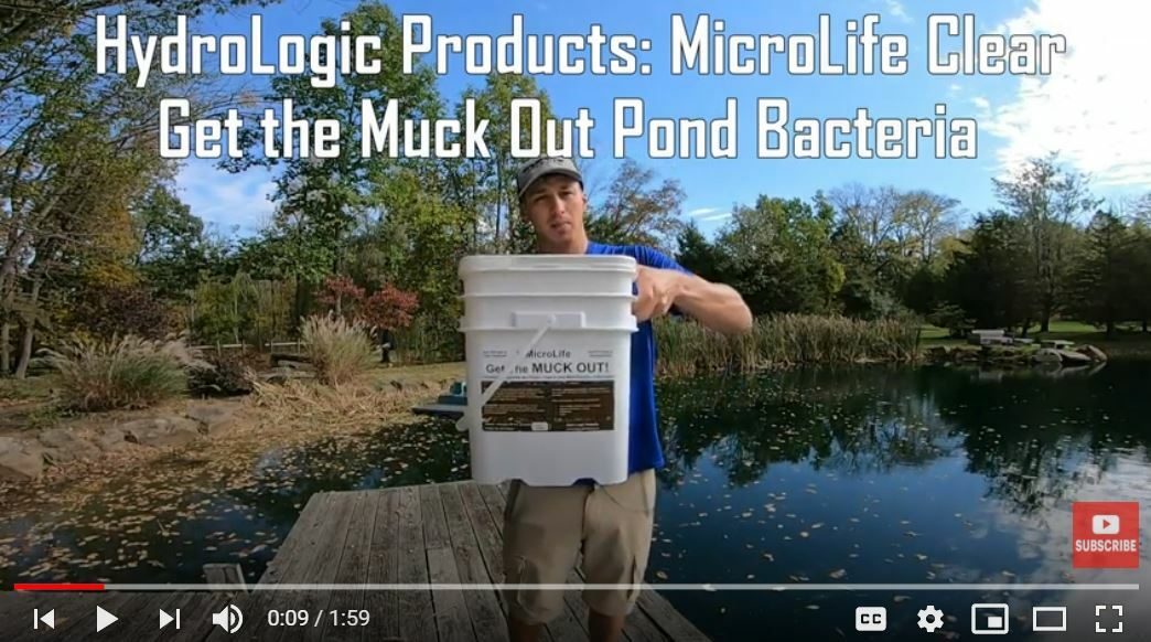 Pro Bass Angler Grae Buck Uses MicroLife Get The MUCK OUT to Breakdown Pond Muck in His Own Pond!
