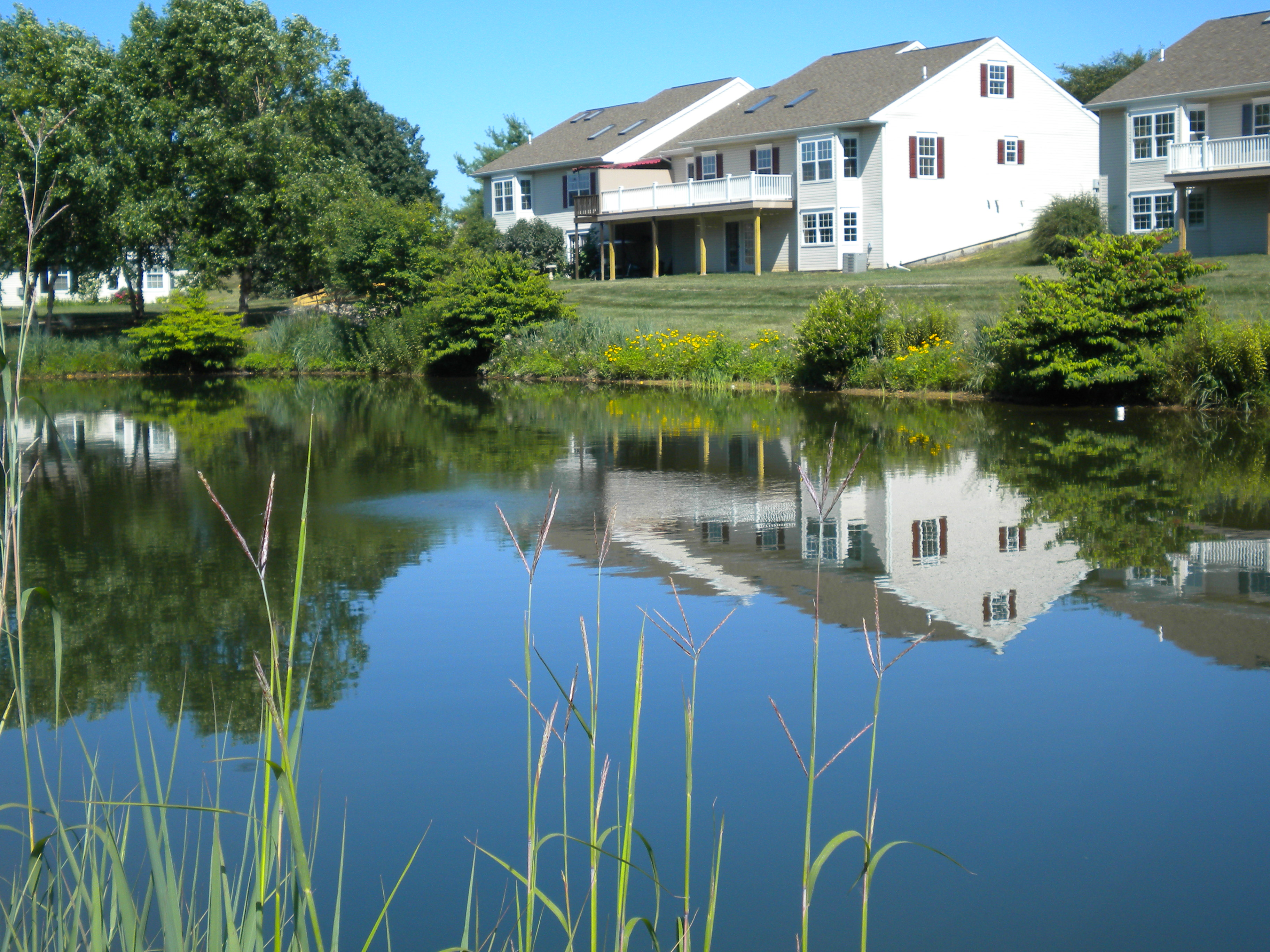 bayberry-pond-aqua-link.jpg