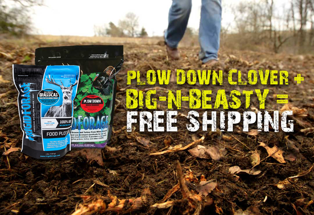 Buy plow down clover and big and beasty food plot and get free shipping from frigid forage