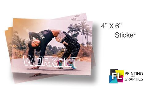 """4"""" X 6"""" Stickers"""