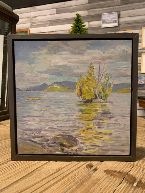 Offshore- Little Recluse, Lake George by Anne Diggory