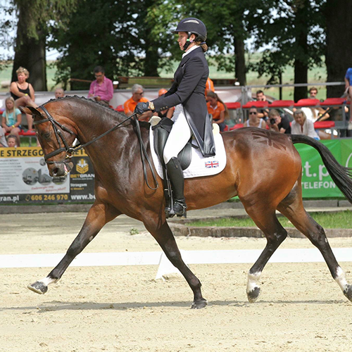 kate-dressage-square-web.png