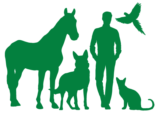animals-outline2.jpg