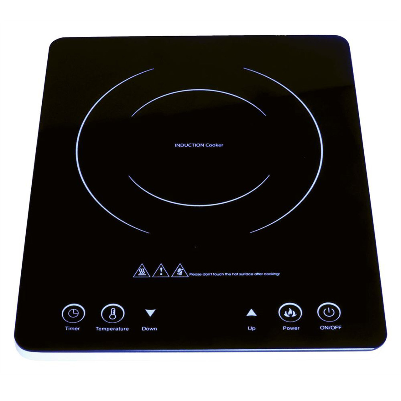 Streetwize Induction Cooker