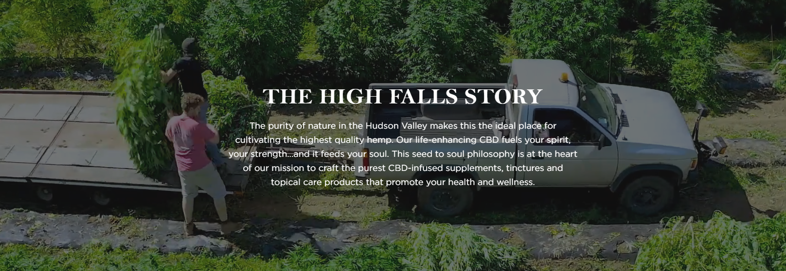 High Falls Hemp story image