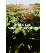 8 Summer Scouting Tips to Increase Fall Hunting Success