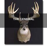 Buck Profile: The General  | THLETE Whitetail Deer Hunting