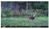 The Story of Topp's | THLETE Whitetail Deer Hunting