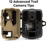 12 Advance Trail Camera Tips | THLETE Whitetail Deer Hunting