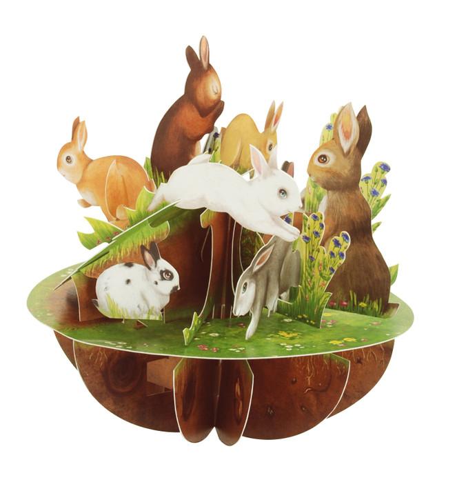 Pirouettes - Rabbits