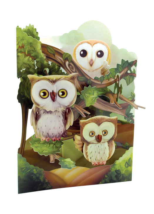 Swing Cards - Owls