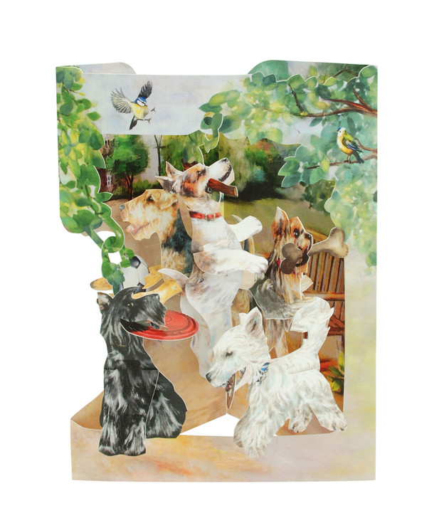 Swing Cards - Terriers Playing