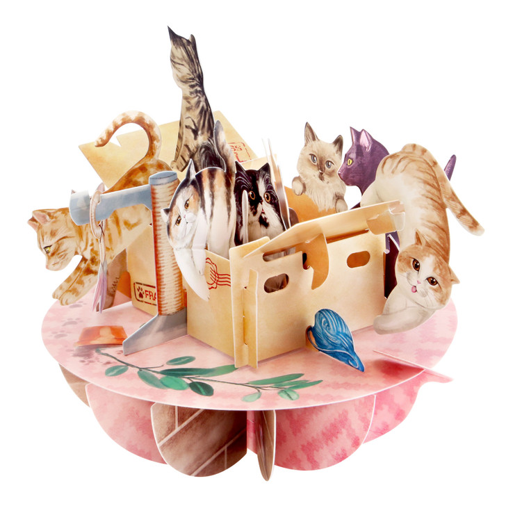 3D Pop-Up Card – Purrrfect Parcel Pirouettes Card – Luxury Birthday Card for Cat Lovers, Family, Kids, Someone Special