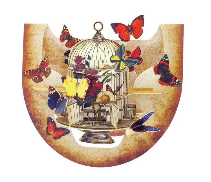 Popnrock - Butterflies And Bird Cage