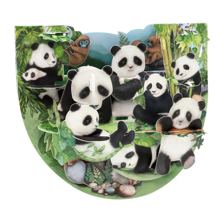 Popnrock - Pandas