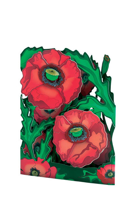 Swing Cards - Poppies