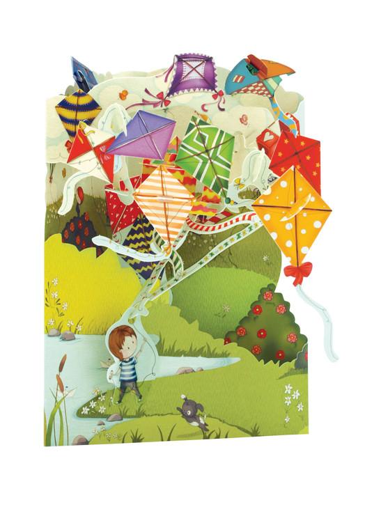 Swing Cards - Kites