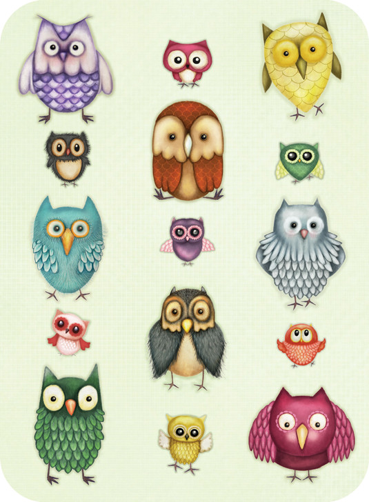 Eclectic Selection - Owl Family