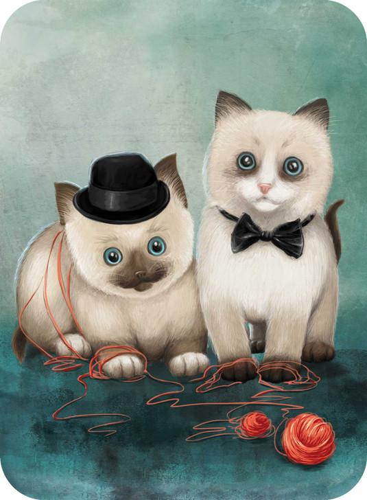 Eclectic Selection - Birman Kittens