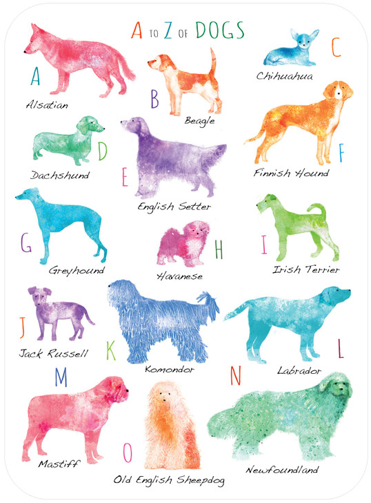Eclectic Selection - A To Z Of Dogs