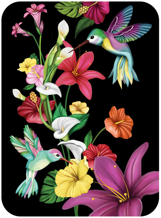 Eclectic Selection - Tropical Hummingbirds