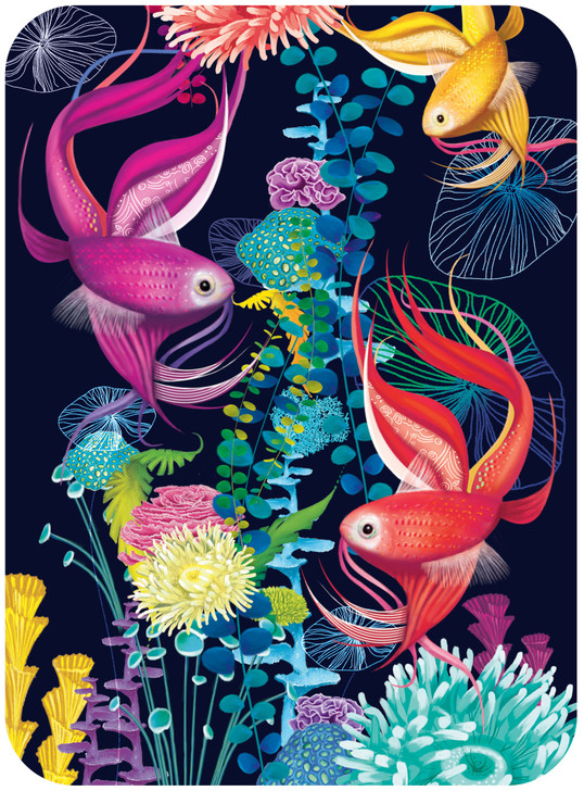 Eclectic Selection - Tropical Fish