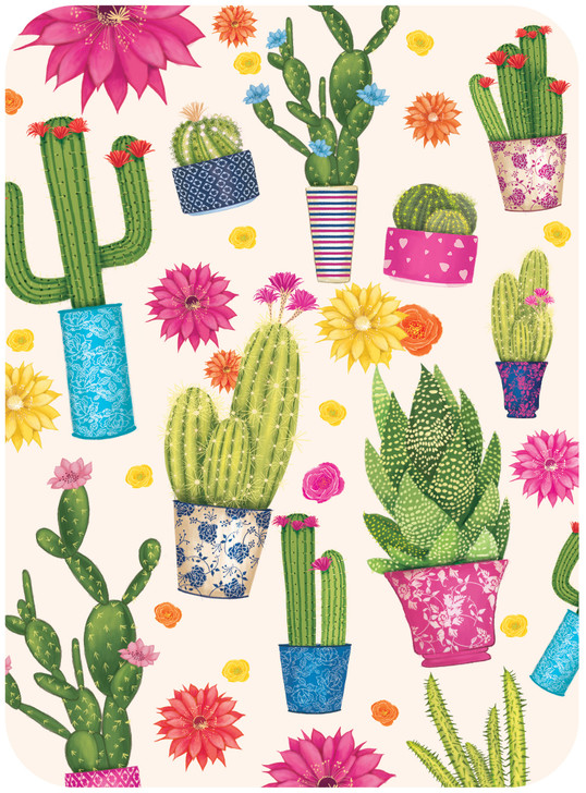 Eclectic Selection - Cacti
