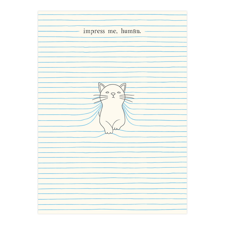 Eclectic Selection - felines - Impress Me, Human