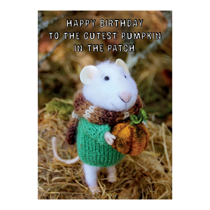 Tiny Squee Mousies - Happy Birthday - To The Cutest Pumpkin...