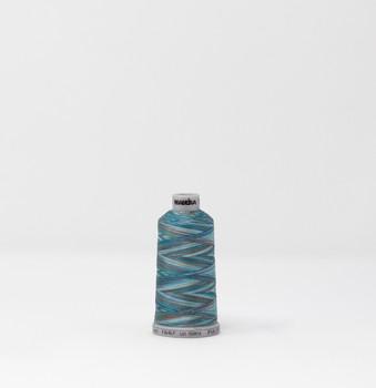 Polyneon - Polyester Thread - 919-1607   Spool (Multi)