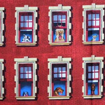 Dogs Rule - Doggy in the Window - Terracotta