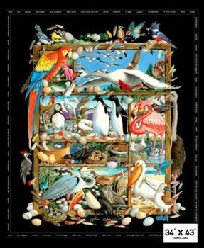 Elizabeth's Studio - Birdwatching - Main Panel - Black