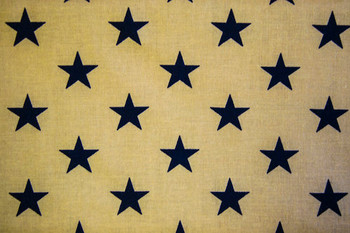 Seasonal SPW222 - Patriotic Stars - Navy/Ant White