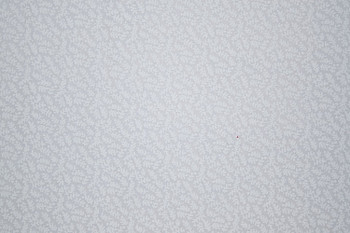 Tone on Tone SPW12 - Ferns - White/White