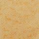 Sit n' Sew Q Stash - Fall - Fat Quarter Roll/20pc
