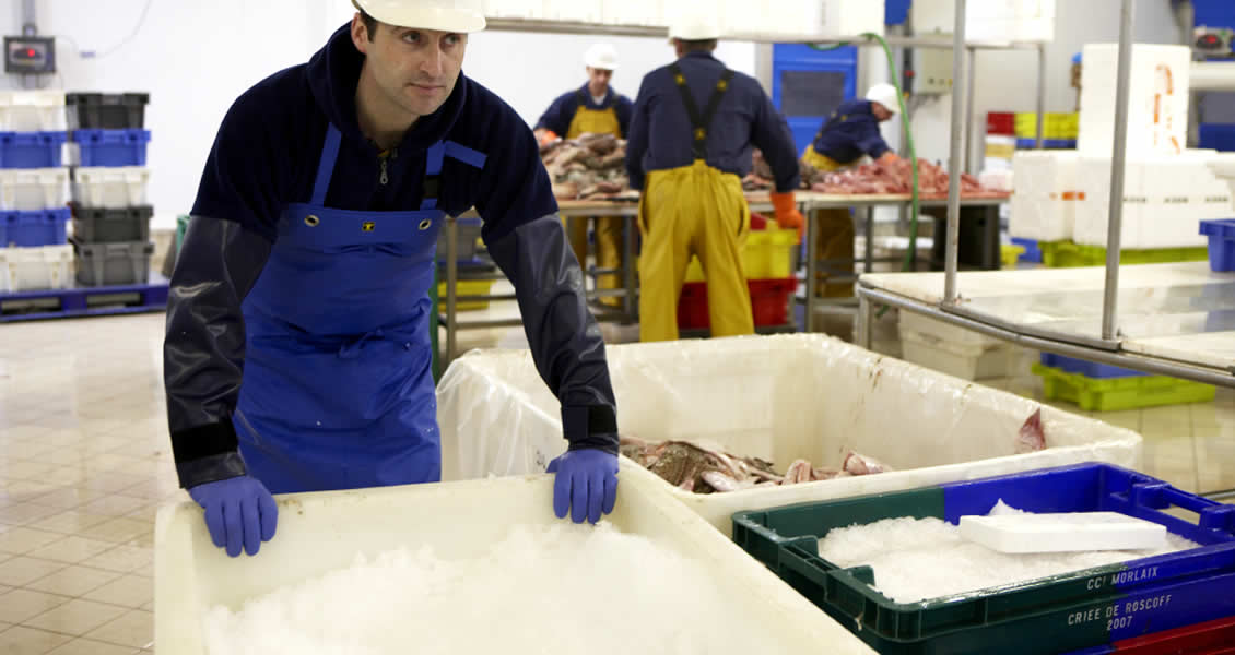 Waterproofs for the food industry