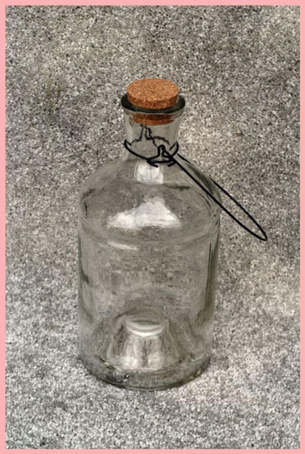 """Glass - Wasp Bottle Vase  10"""" x 5""""(79350) List Price$12.00"""