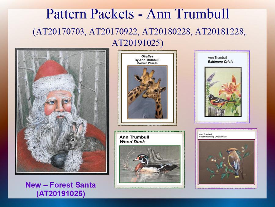 Pattern Packets - Ann Trumbull (AT200191025, AT20170703, AT20170922, AT20180228, AT20181228)