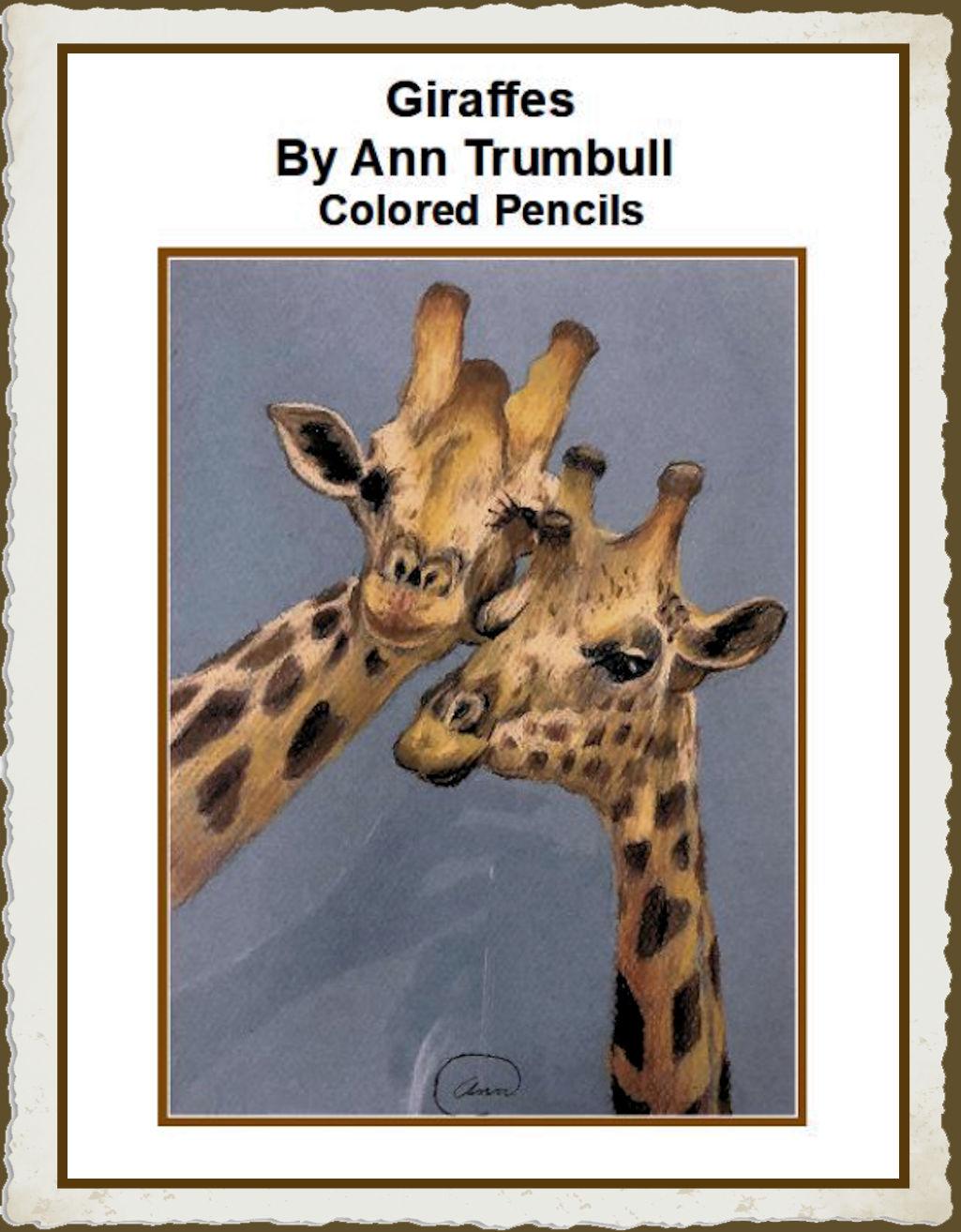 ann-trumbull-giraffes-20181228-framed.jpg
