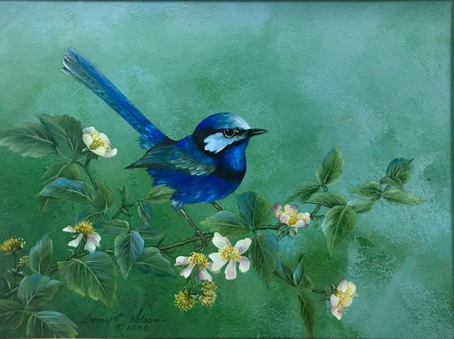 eastern-bluebird-with-trumpet-honeysuckle.jpg