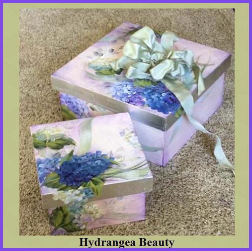 hydrangea-beauty-2.jpg