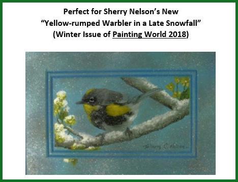 sn-yellow-rumped-warbler-in-late-snow-fall.jpg