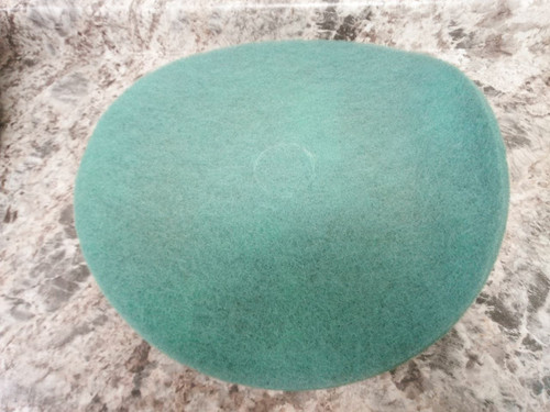 PK 5 20 In Aqua 3M 3100 Burnishing Pad