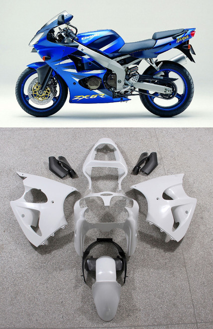 Fairings Plastics Kawasaki ZX6R 636 Blue ZX6R Racing (2000-2002)