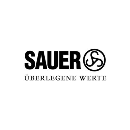Sauer 303 4 round magazine 9.3x62mm