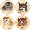 4 Coasters with pictures of owls